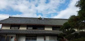 雨漏り補修瓦工事 大屋根