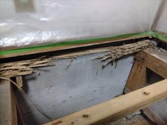 床下防湿工事