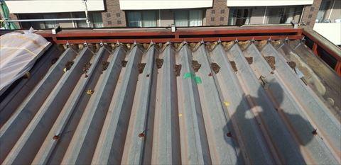 折半屋根カバー工事