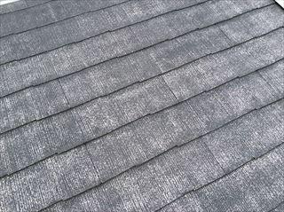 屋根外壁現地調査