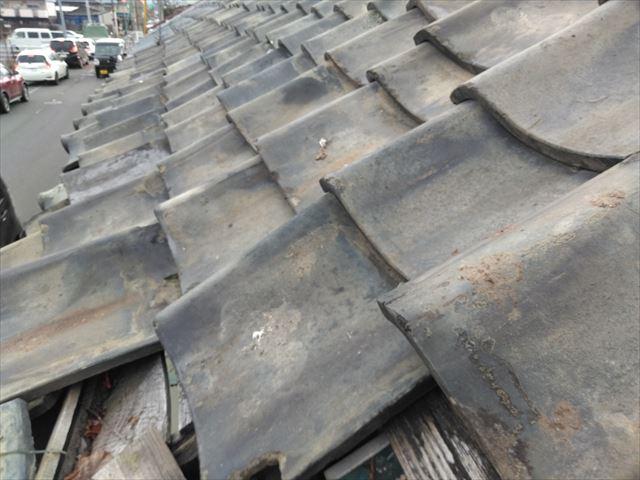 松本市にて道路への瓦の落下を防ぐ為ブルーシートにて屋根を覆いました