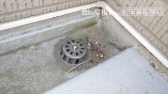 ベランダ防水 排水ドレイン