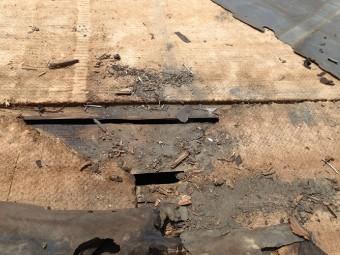 ボロボロになった防水紙と野地板